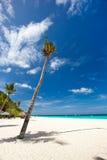 Tropical scene. Beautiful tropical scene, Philippines, Boracay Royalty Free Stock Photography