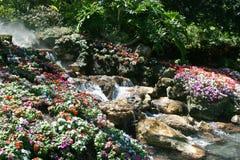 Tropical scene Royalty Free Stock Photo