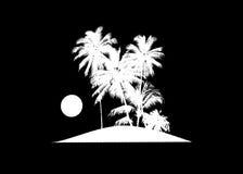 Tropical Scene Island Sunset Illustration Royalty Free Stock Photography