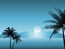 Tropical scene at night Stock Photography