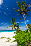 Tropical scene, Philippines Stock Images