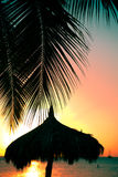 Tropical Scene sunset Stock Photo