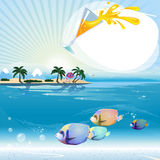 Tropical scene with underwater life and text place Stock Photos