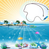 Tropical scene with underwater life and text place Stock Photography