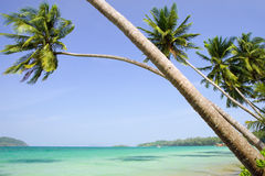 Tropical Scenery Stock Photo