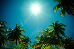Tropical scenery. Sunbeams over an exotic island Stock Images