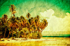Tropical scenery. Creative tropical scenery with grunge Stock Photos