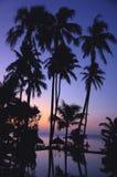 Tropical scenery on beach stock photos