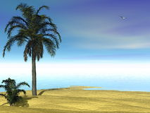 Tropical scenery - 3D render Stock Photography