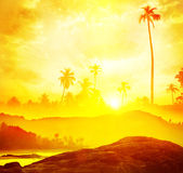 Tropical scenic Royalty Free Stock Photography