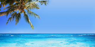 Tropical sea Royalty Free Stock Photo
