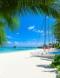 Tropical sea Royalty Free Stock Images