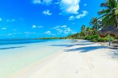 Tropical sea Stock Image