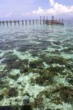 Tropical sea and jetty Royalty Free Stock Image