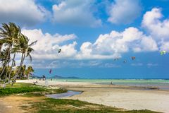 Tropical sea landscape with kite surfer Stock Photography