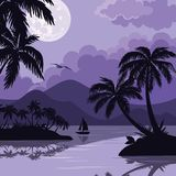 Tropical sea landscape with moon and palm Royalty Free Stock Image
