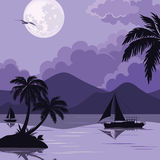 Tropical sea landscape with moon and palm Royalty Free Stock Images