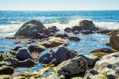 Tropical sea ocean rocky shore with stones and sunny day Stock Image