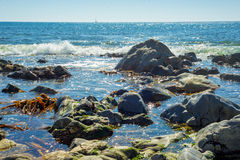 Tropical sea ocean rocky shore with stones and sunny day Royalty Free Stock Photography