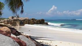 Tropical sea stock video