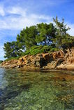 Tropical sea shore Royalty Free Stock Photos