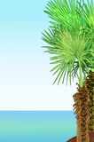 Tropical sea shore with palm trees. Illustration 2D Royalty Free Stock Photography