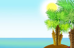 Tropical sea shore with palm trees. Illustration 2D Stock Photography
