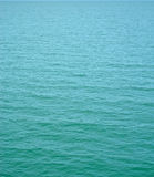 Tropical sea surface Royalty Free Stock Photo