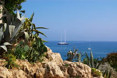 Tropical sea view. A tropical view on sea with a big yacht with stones and plants in front. Cote d'Azur, france Royalty Free Stock Image