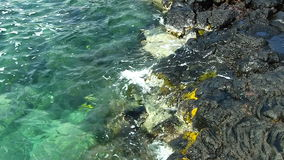 Tropical Sea Water Surging Up On Black Lava Rock Shore. Ocean Water Gently Surging Against Black Lava Shore Kona Hawaii stock video footage