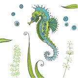 Tropical Seahorse background Stock Photos
