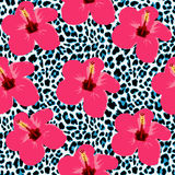 Tropical seamless background with hibiscus flowers and leopard pattern. Exotic  illustration Stock Images