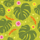 Tropical seamless floral  background Royalty Free Stock Image
