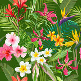 Tropical Seamless Floral Summer Pattern. For Wallpapers, Backgrounds, Textures, Textile, Cards. Royalty Free Stock Photo