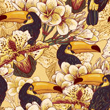 Tropical seamless parrern with flowers and Toucan Stock Photography