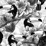 Tropical seamless parrern with flowers and Toucan Stock Photo