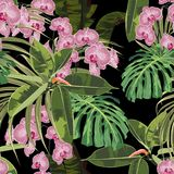 Tropical seamless pattern background with exotic pink orchid flowers, palm monstera leaves, jungle leaf. Black background vector illustration