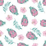 Tropical Seamless Pattern Colorful Vector TROPICAL FRUIT Royalty Free Stock Image