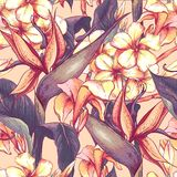 Tropical seamless pattern with exotic flowers. Stock Images