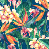 Tropical seamless pattern with exotic flowers. And butterflies Stock Photography