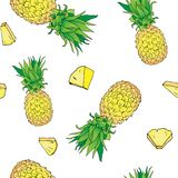 Tropical seamless pattern of exotic fruit pineapple with pieses royalty free stock image