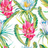 Tropical seamless pattern. Exotic leaves and flowers. Vector.Dragonfruit, pitaya,pitahaya. Flowers pitaya. Stock Photo