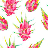 Tropical seamless pattern. Exotic leaves and fruit. Vector.Dragonfruit, pitaya,pitahaya. Pitaya is the plant in Royalty Free Stock Image