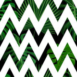 Tropical seamless pattern with exotic palm leaves. Royalty Free Stock Photo