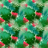 Tropical  seamless pattern with jungle leaves and watermelon fruit floral background. Stock Images