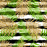 Tropical seamless pattern with monstera leaves and golden glitter texture. Stock Image