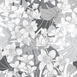 Tropical seamless pattern with orchids and palm leaves. Monochro Stock Image