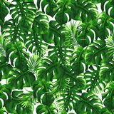 Tropical seamless pattern with palm leaves. stock illustration