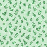 Tropical seamless pattern with palm leaves. Exotic tree foliage made in brush style. Vector. Stock Images