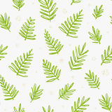 Tropical seamless pattern with palm leaves. Exotic tree foliage made in brush style. Vector. Royalty Free Stock Photos